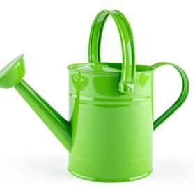 Kastekann Roheline